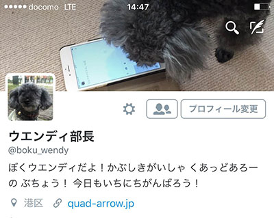 Please follow me, Bow Bow!!