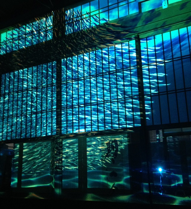 Aquarythm x 和風プロジェクションマッピング!